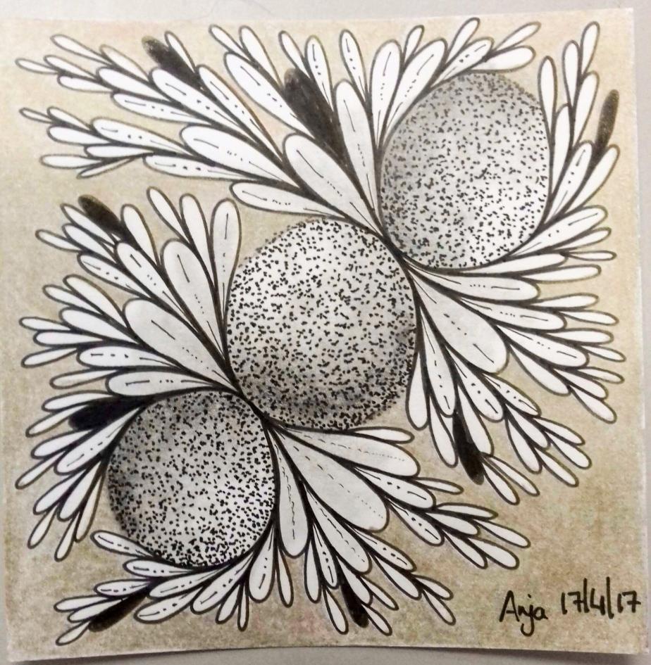 Artist Focus: AnjaMeeter